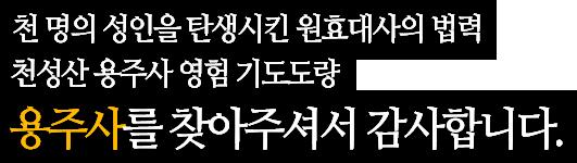 천 명의 성인을 탄생시킨 원효대사의 법력 천성산 용주사 영험 기도도량 용주사를 찾아주셔서 감사합니다.